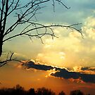 Sun going down by Judi Taylor