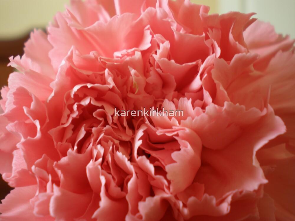 Pink Carnation  by karenkirkham