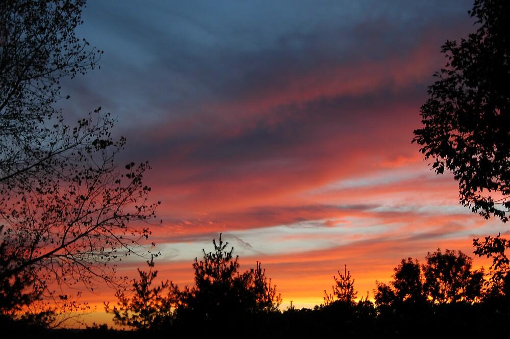 March Sunrise by Jim Caldwell