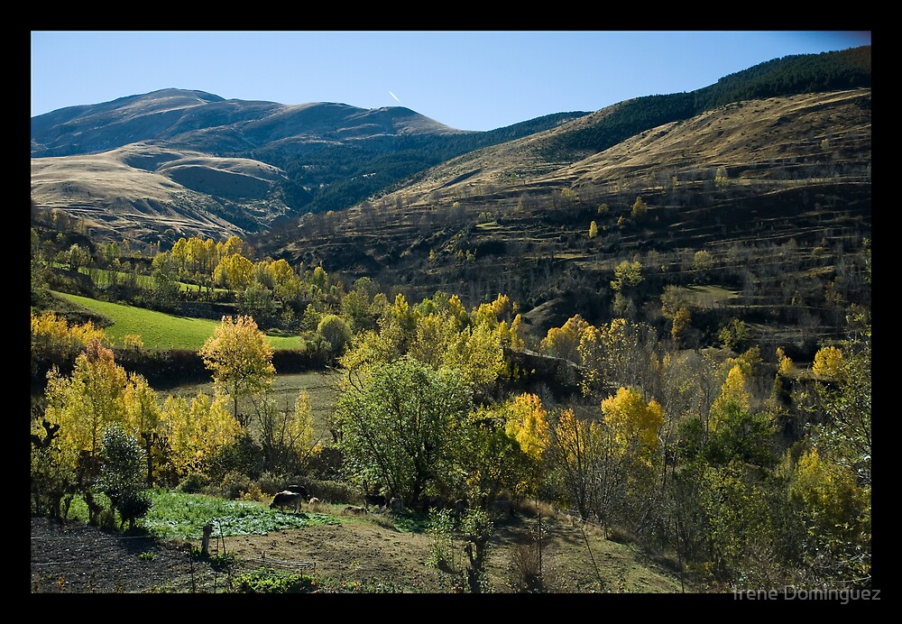 Silk Landscape by Irene Dominguez