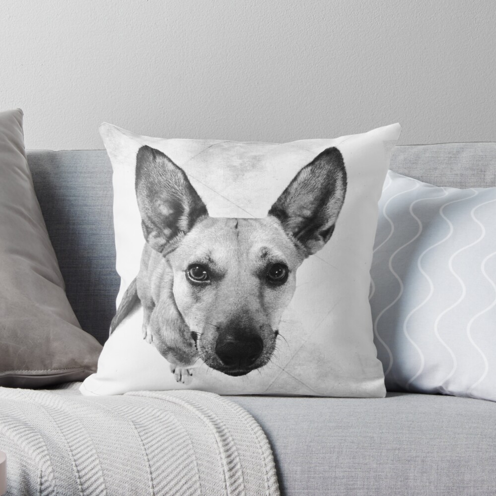 Carolina Gray Pup Throw Pillow