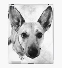 Carolina Gray Pup iPad Case/Skin