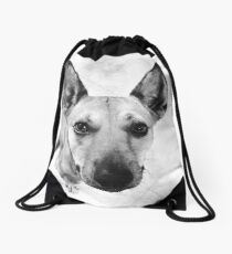 Carolina Gray Pup Drawstring Bag
