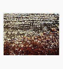 Resin drops on pine tree bark in breathtaking light, macro capture Photographic Print