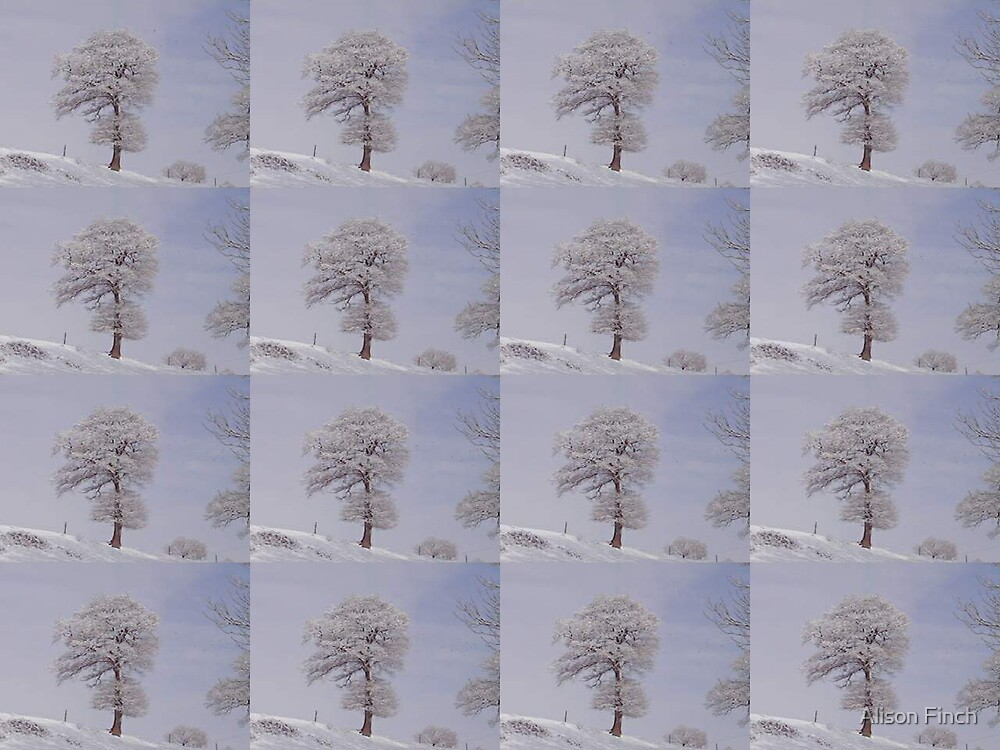 Multi-image Tree-in-Snow by Alison Finch