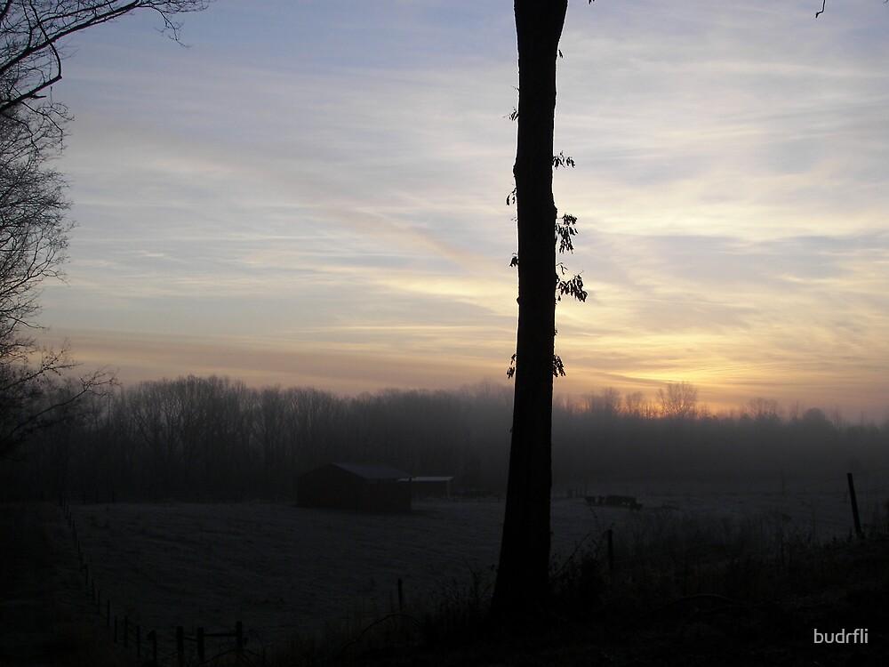 first light by budrfli