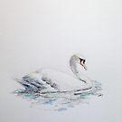 Swan upon the water by Dan Tabata