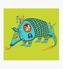 Armadillo, from the AlphaPod collection Photographic Print