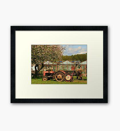 Berry Hill Nursery Framed Print