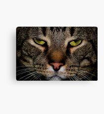 You Woke Me for This? Canvas Print