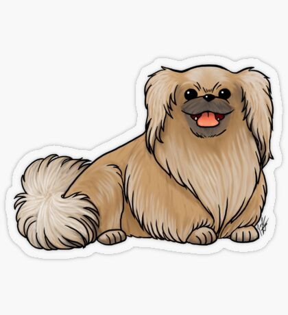 Pekingese Transparent Sticker