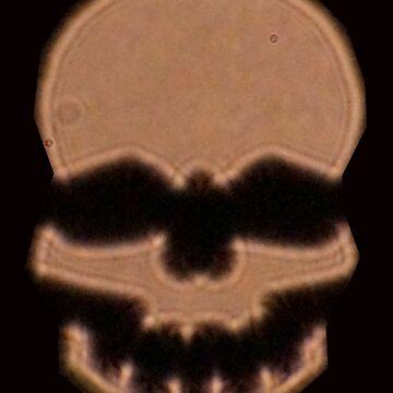 Skull by marialberg
