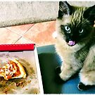 samuari? pizza? cat? My pizza!!! by MacLeod
