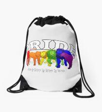 LGBT+ (Lion) Pride Drawstring Bag