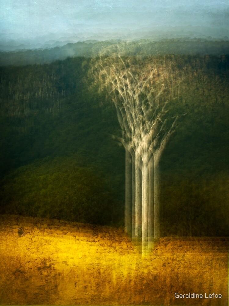 Past connections by Geraldine Lefoe