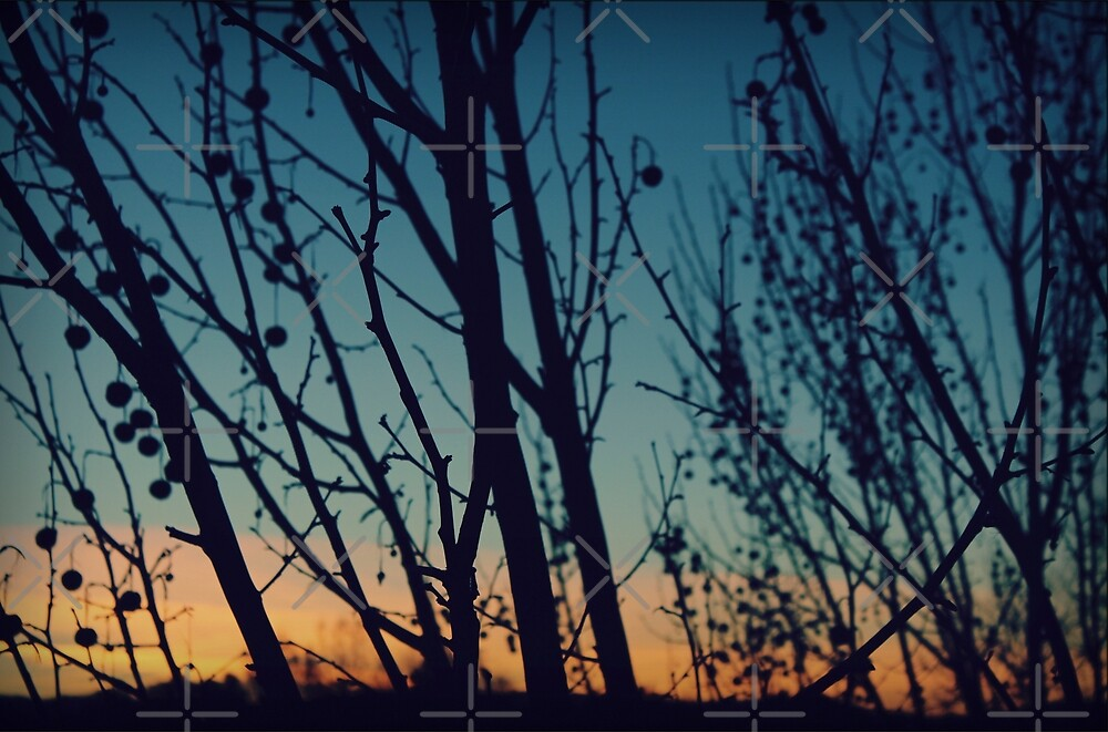 Dancing With the Sunset by Jenn Ramirez