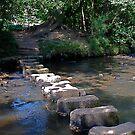 Egton Bridge   stepping stones by dougie1