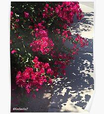 Reded Flower Bush Poster