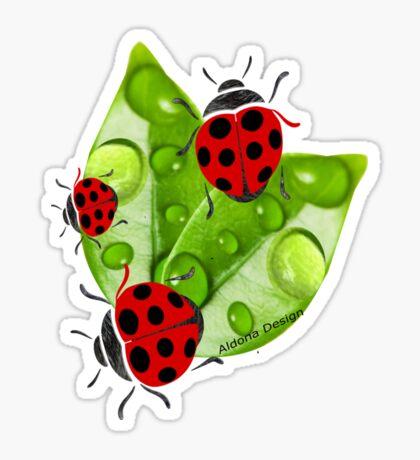 lady bug ( 3351  views) Sticker