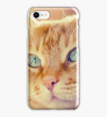 Red cat. iPhone Case/Skin