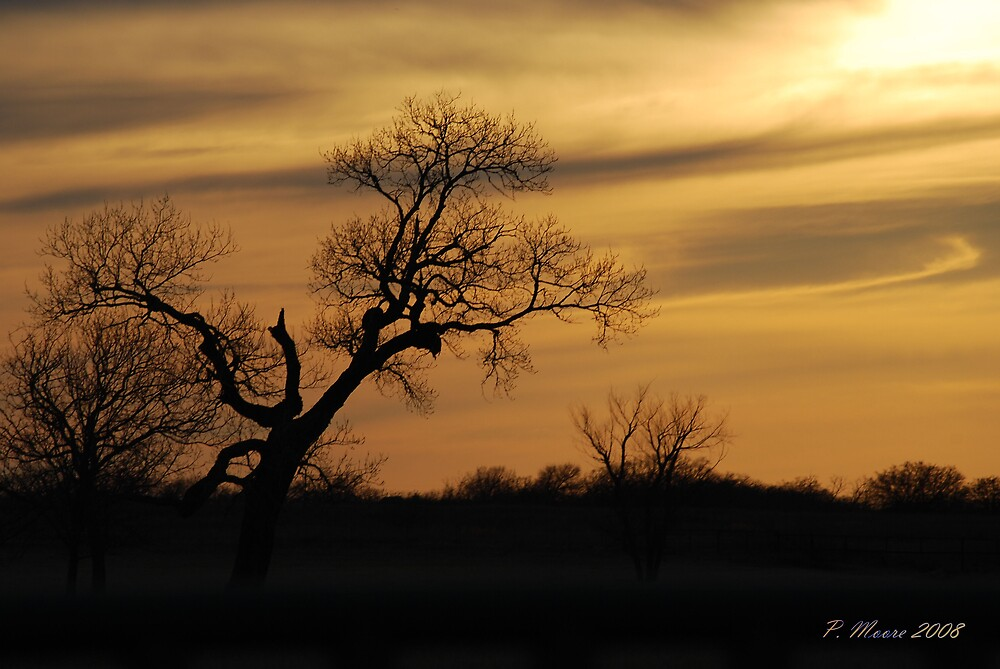 End of the Day by Pat Moore