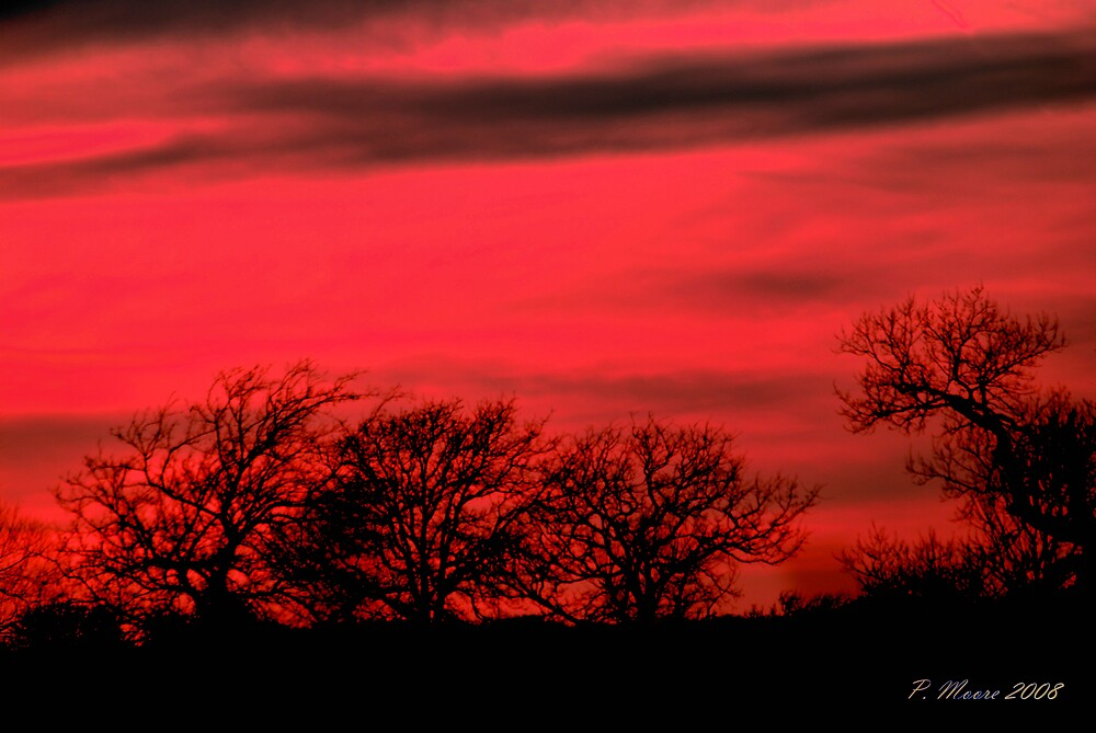 Red Sky at Night by Pat Moore