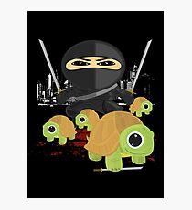 Ninja and Turtles Photographic Print