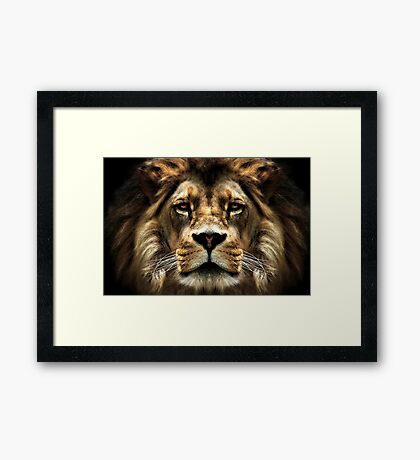 The Lion, the witch..... Framed Print