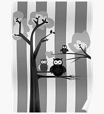 Black & White Owls Poster