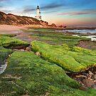 0127 Point Lonsdale Lighthouse by Hans Kawitzki