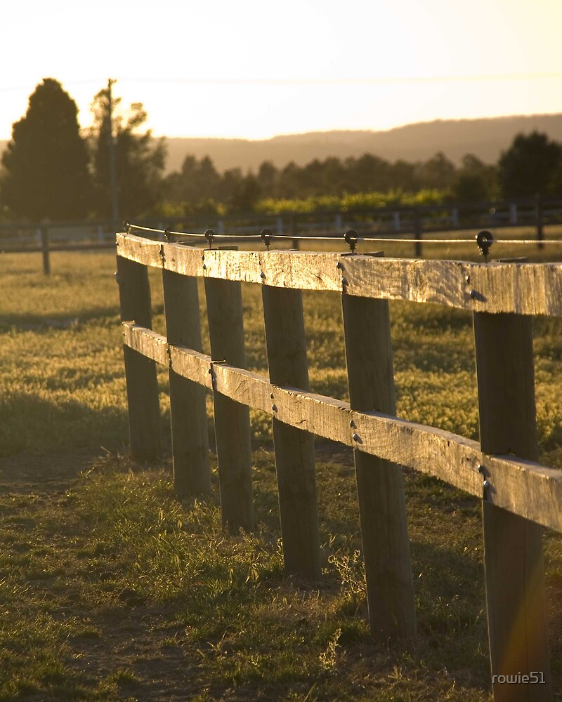 Fence in the sun by rowie51