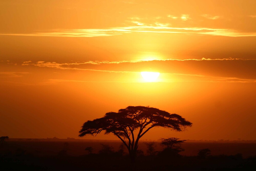 Serengeti Sunset by GON2DOGS