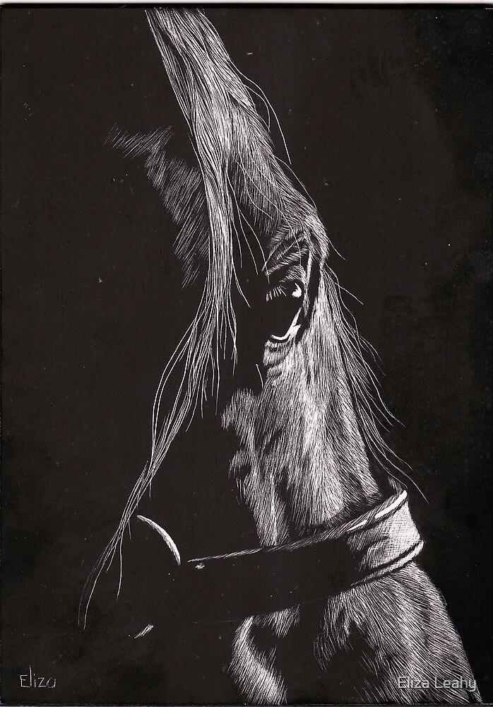 Dark Horse by Eliza Leahy