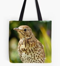 Four Hungry Mouths To Feed... Phew!!! -Song Thrush - NZ Tote Bag