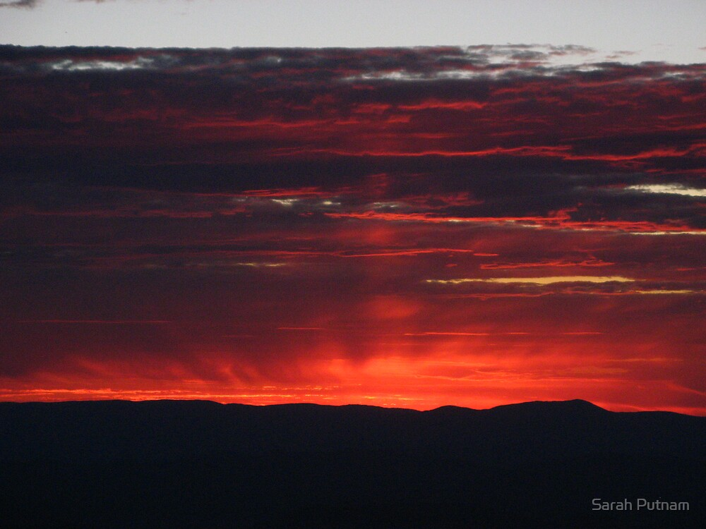Red Sky at Night by Sarah Putnam