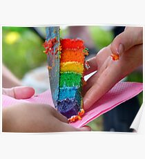 A Sweet Rainbow Treat - Rainbow Owl Cake - NZ Poster