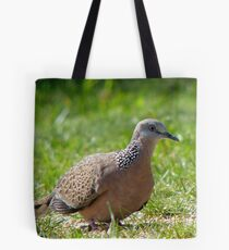 Come A Little Bit Closer... - Malay Spotted Dove - NZ Tote Bag