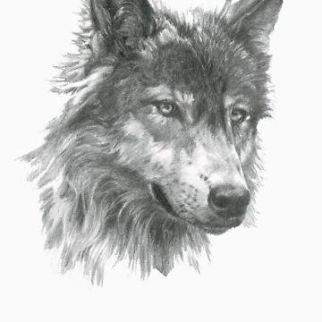 Wolf by Szeghalmi