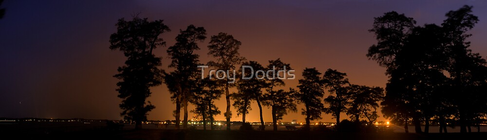 Lynch Park at Night by Troy Dodds