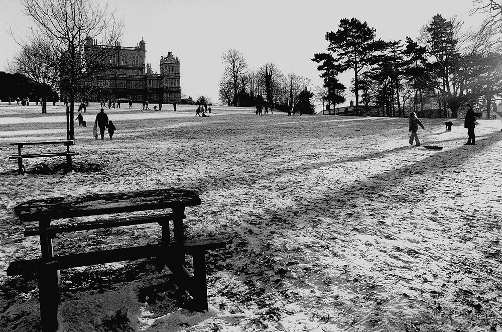 Wollaton park in the snow by Nick Pautrat