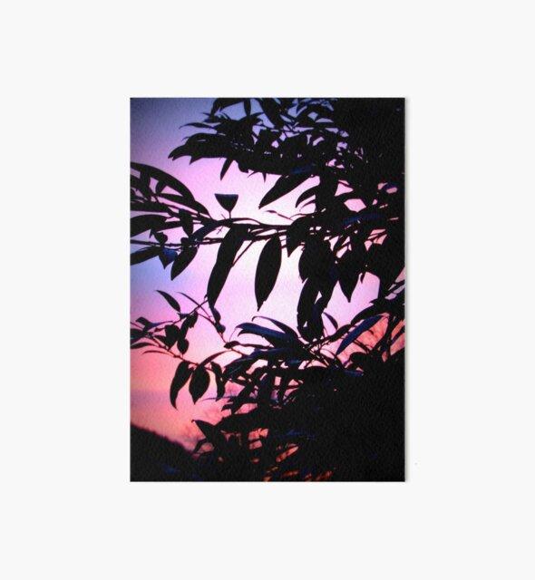 Sonnenaufgang - sommer - Farben des Himmels - Color of the sky von Marion Waschk