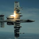 Ein A-10 Warzenschwein durchbricht den Pacific Alaska Range Complex während des Live-Feuers. von StocktrekImages