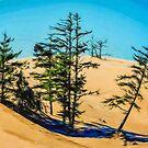 Dunes Win by Steve Walser