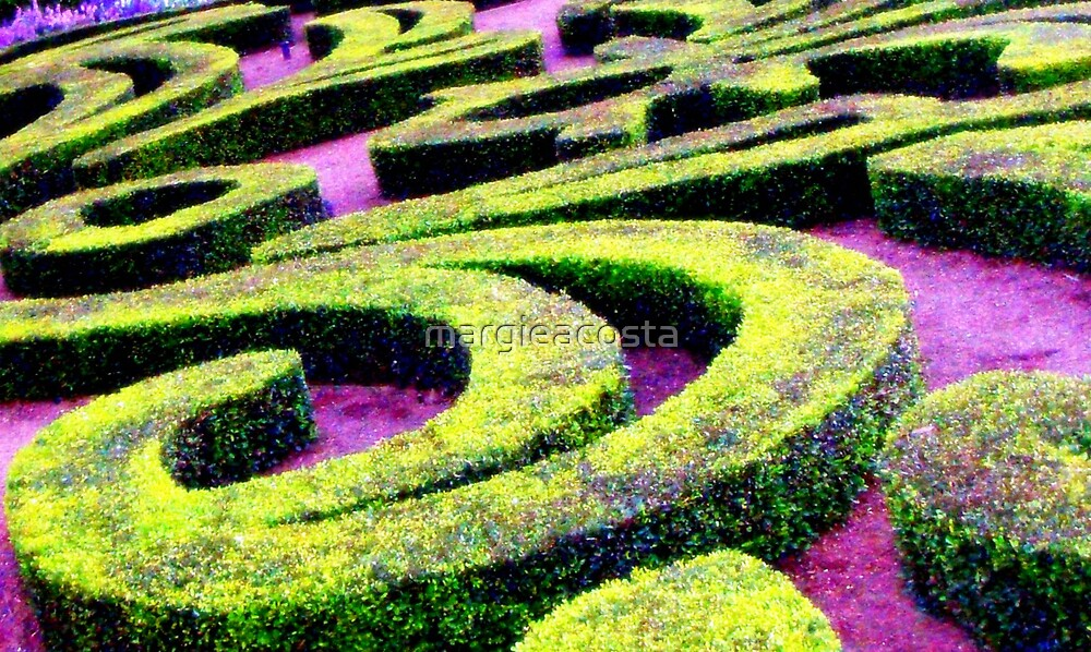 Topiary Maze by margieacosta