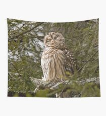 Arcadia Barred Owl  Wall Tapestry