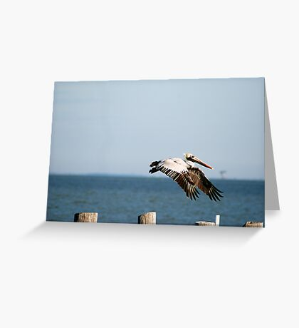 Flying In Greeting Card
