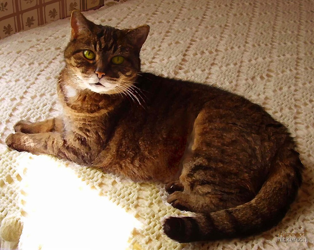 Tibby by hickerson
