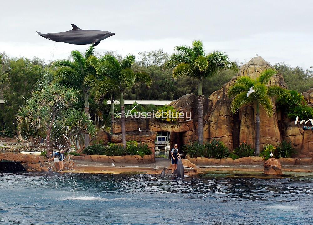 Weeeeee, I can Fly. by Aussiebluey