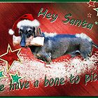 The Somewhat Different Christmas Card by Bine