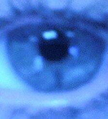 eye love you by jacquelina29
